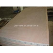 Falcate Core Commercial Blockboard