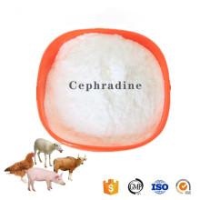 Buy online active ingredients 38821-53-3 Cephradine powder