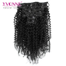 Brazilian Kinky Curly Virgin Hair Clip in Extensions