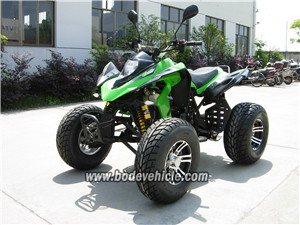 New 250CC Gas/Petrol Quads