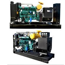 Générateurs diesel électriques / biogaz / générateurs à gaz naturel Weifang Honypower 100kw