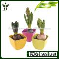 promotional garden pots wholesale
