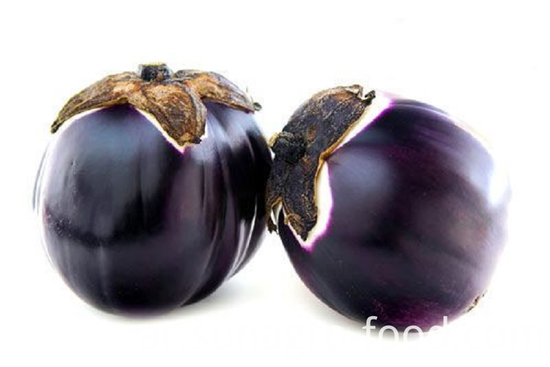 High Production Quality Eggplant