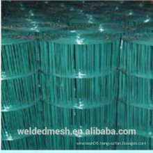 Hot sale ! Holland Welded Wire Mesh (Factory)