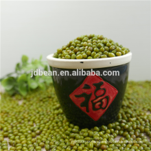 Organic Green mung beans for sale