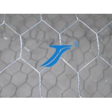 Malla de alambre hexagonal galvanizada / malla de alambre de pollo