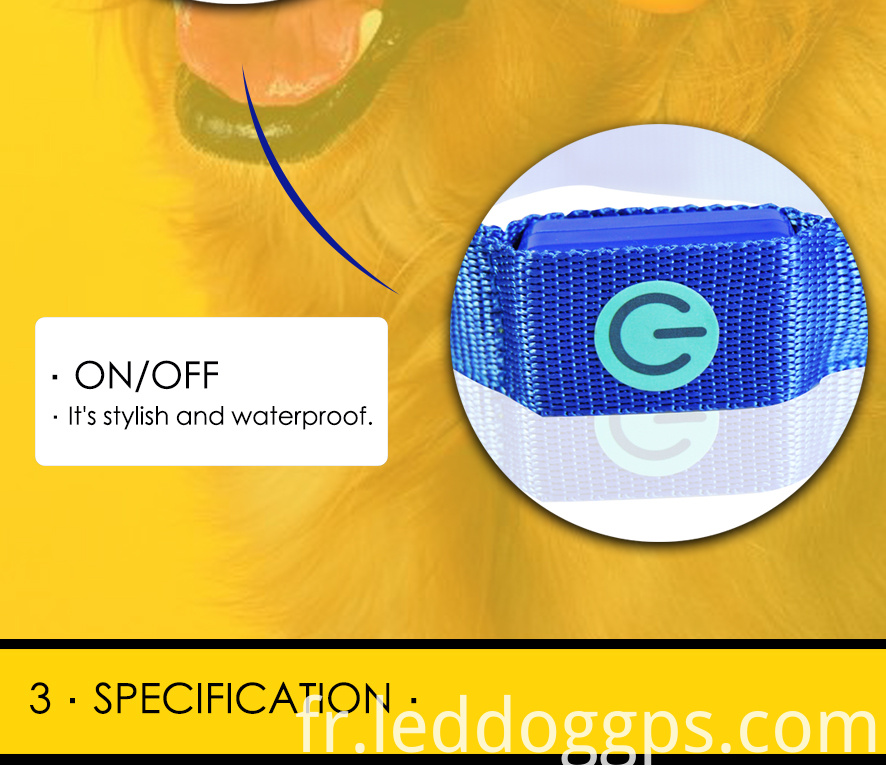 Premium Brightest Led Dog Collars