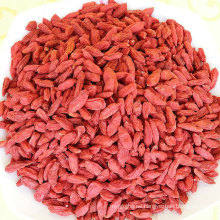 Wholesale Health Dehydrated Fruit Goji Berry Lycium chinensis