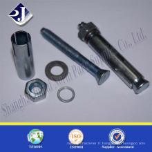 Clous à double extrémité avec set TS16949 ISO9001