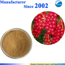 ISO certified Plant Powder 100% natural Schisandra Berry extract