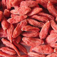 O rei de Ningxia Bagas vermelhas secas de Goji (Wolfberry)