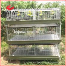 Galvanisiertes Huhn, das Käfig und Fleisch-Brathähnchen-Käfig legt (gute Qualität)