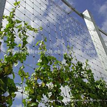 Flower Plant Climbing Net