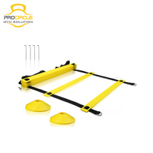 Procircle Flat Sports Training Agility Ladder Gym