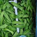 Fornecimento de vagens congeladas de ervilha para a venda por atacado