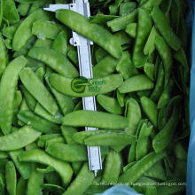 Supply Frozen Pea Pods for Wholesale