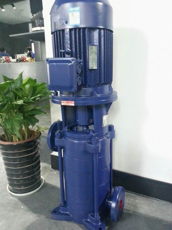 DL vertical multistage centrifugal pump stainless steel vertical multistage pump 4