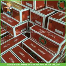 China New Crop Frische Karotte zum Kuwait Markt