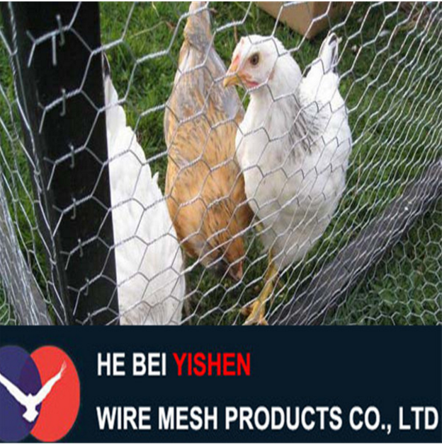 Galvanized Diamond Wire Mesh Fence Rolls