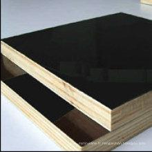 Contreplaqué de film noir ou bois marin