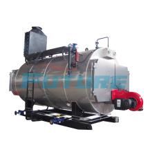 Asme Code Chaudière à vapeur à gaz / gaz (WNS1-15t / h)