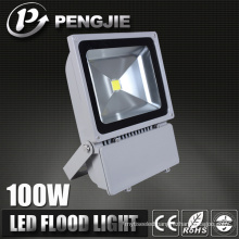 Waterproof on Sale OEM LED Floodlight for Garden Lamp