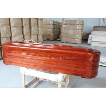 Funeral de caixão para promoção de vendas (R001TF)
