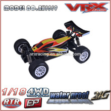 1/18 scale electric rc buggy, brushless rc car