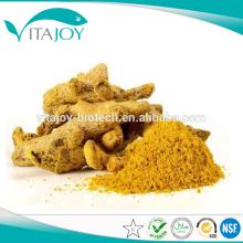 Venta caliente Extracto de raíz de cúrcuma 95% Curcumina HPLC