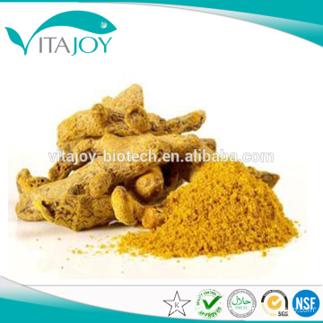 Hot Sale Turmeric Root Extract 95% Curcumin HPLC