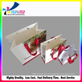 Shenzhen Factory Low Cost Paper Foldable Fancy Gift Bag