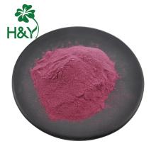 Natural Elderberry Extract powder elderberry juice powder
