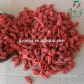 Gratis muestra convertional Ning xia goji berry