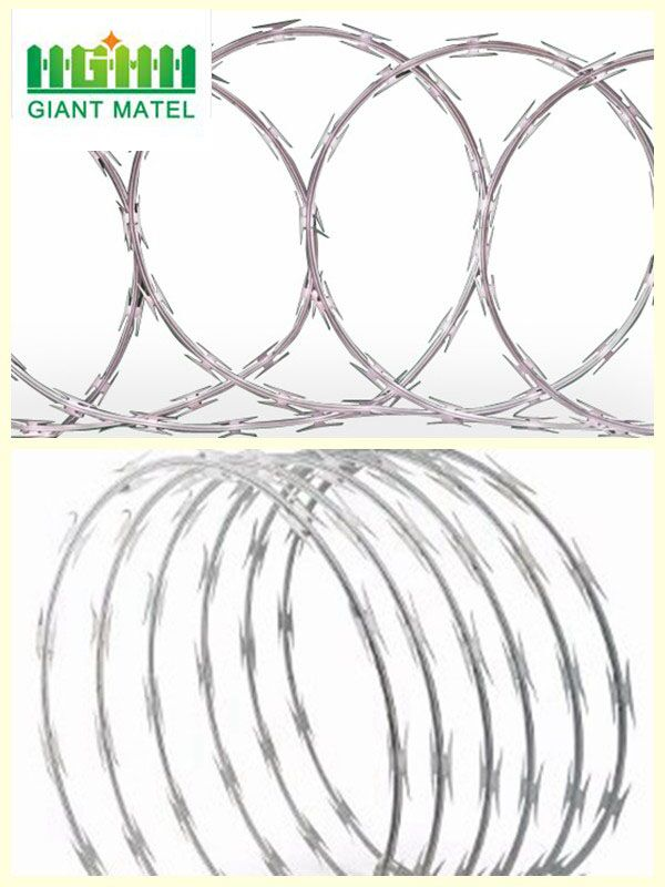 Galvanized Sharp Razor Barbed Wire High Security