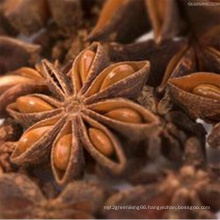Star Anise with High Quality