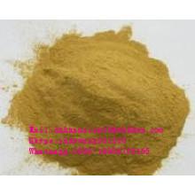 Natural Medicago Sativa Extract with Isoflavones 20%-40% UV