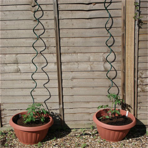Hot Dip Galvanized  Tomato Spiral Plant Support
