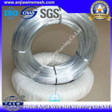 Hot DIP Galvanized Ironw Wire with (CE and SGS)