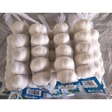 Chinesischer frischer Knoblauch Reiner weißer Knoblauch 2017 Ernte Knoblauch