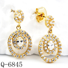 Latest Styles Earrings 925 Silver Jewelry (Q-6845)