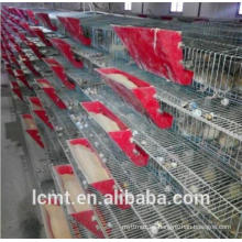 Rendimiento de costo ultra alto de equipos de cultivo de jaulas de codorniz.