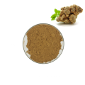 High Quality Factory Supply Whole san qi Herbs Notoginseng Root Extract Powder