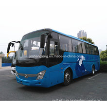 Low Price 12m 55 Seats Passenger Bus for Sale