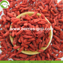 New Crop Factory Supply Dried Zhongning Lycium