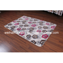Luxury Raschel Mink Shaggy Decoration Carpet (NMQ-CPT008)