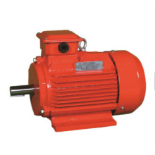 Totally-Enclosed Three-Phase Induction Motor