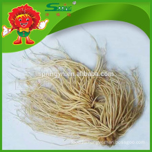 2015 Chinese vegetable fresh leek root