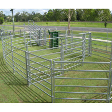 black color powder coated portable horse fence panel