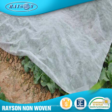 Planta no tejida de plantas de árboles agrícolas de productos calientes