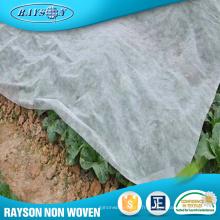Produit végétal agricole de plantes chaudes Arbre non tissé